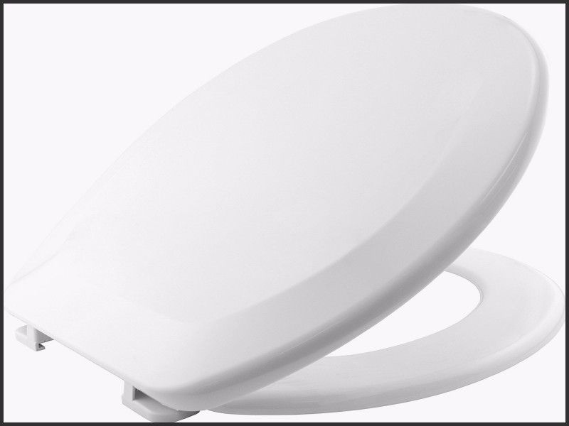 Remarkable Awesome Westport Toilet Seat Warranty Home Furniture One Ibusinesslaw Wood Chair Design Ideas Ibusinesslaworg