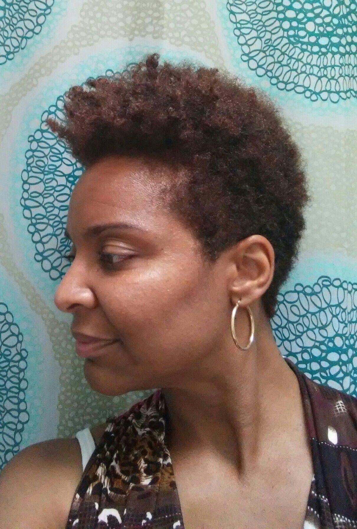 Tapered fro natural transition hair styles pinterest hair style