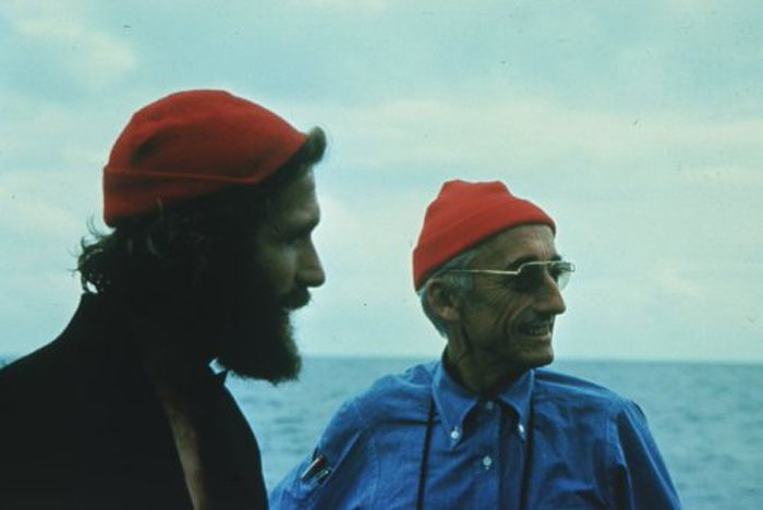 Cousteau, and their little red hats | Inspiration ...