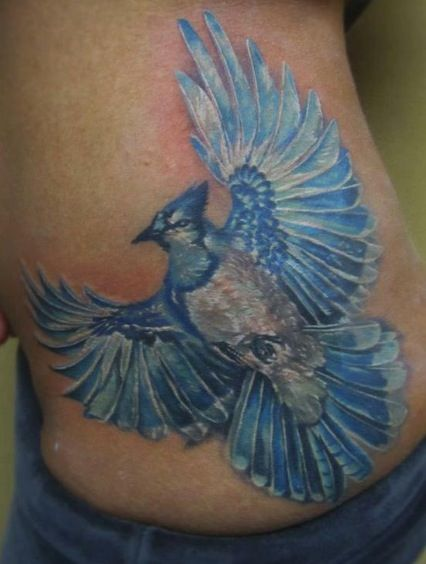 No outline blue jay tattoo