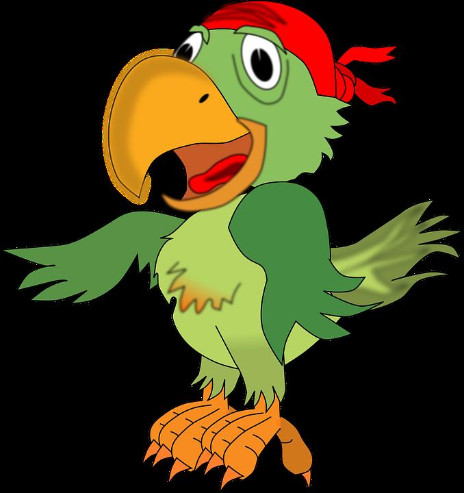 Obraz Zdarma Na Pixabay Papousek Pirati Zvire Pirate Parrot Parrot Cartoon Pirates