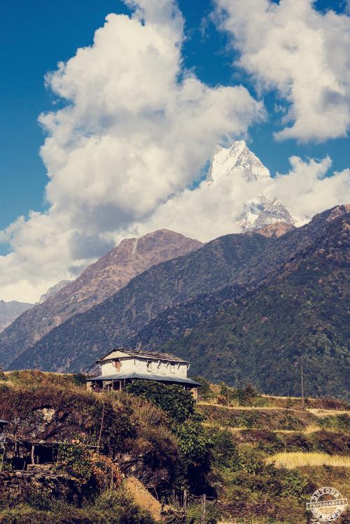 #himalaya #snowcap #fishtail #Annapurna #himalaya #magic