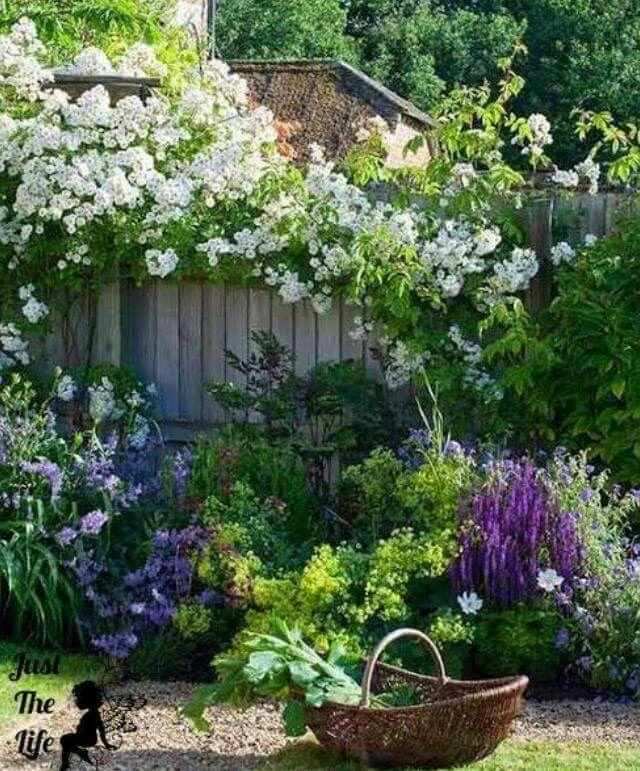 Pretty garden | Gardens | Pinterest | Small garden design, Gardens ...