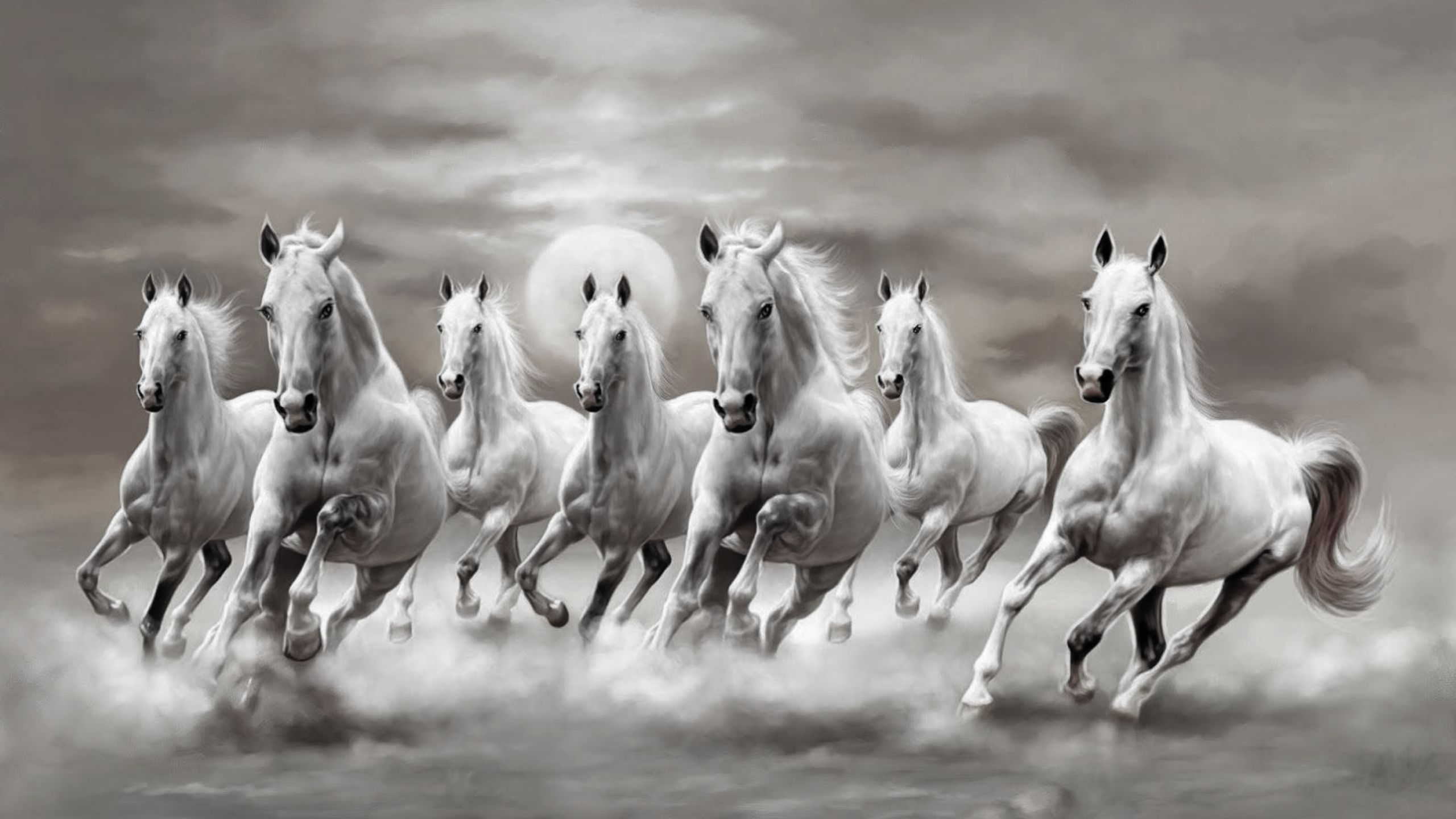 Black And White Horses Wallpaper Horse Wallpaper Horse Canvas
