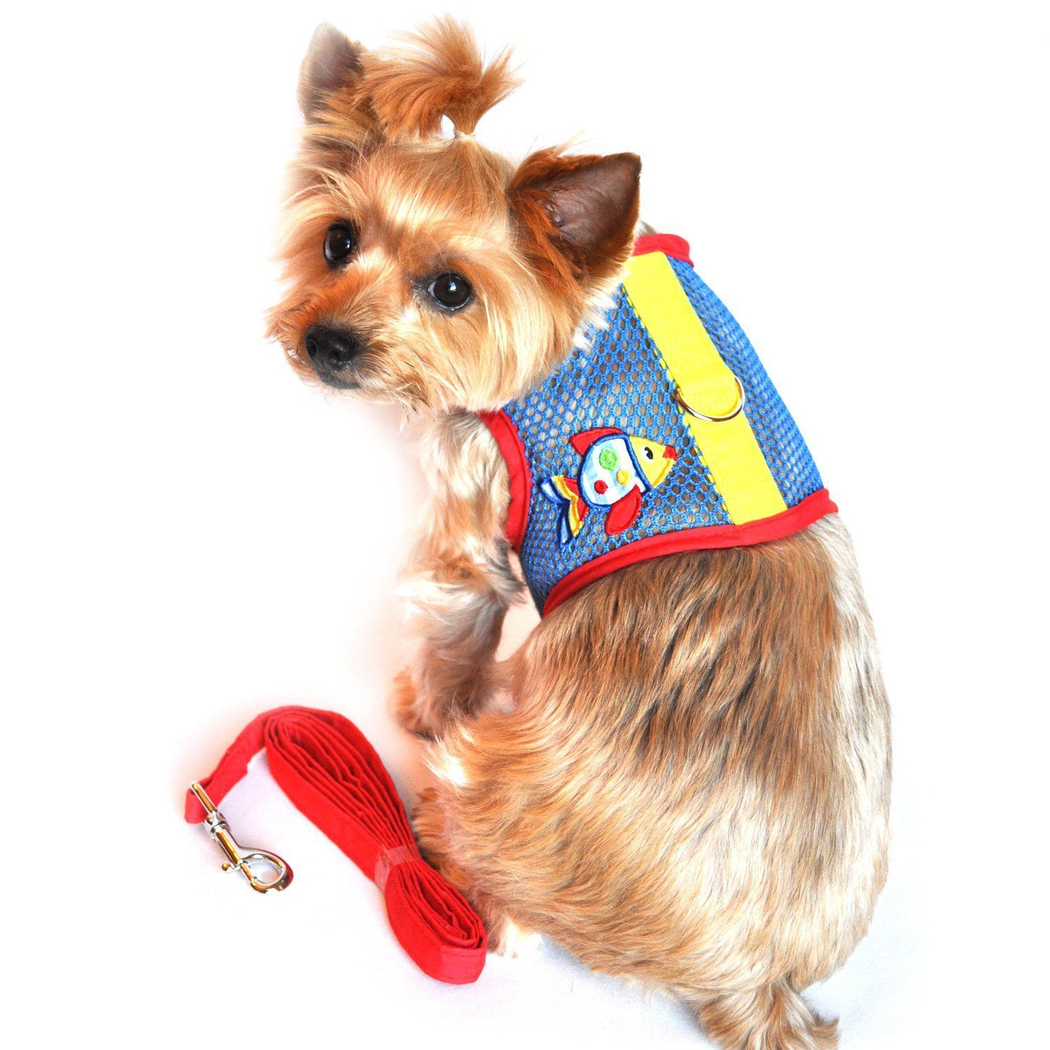 The Cool Mesh Small Dog Harness Is Perfect For Summer Keep Your