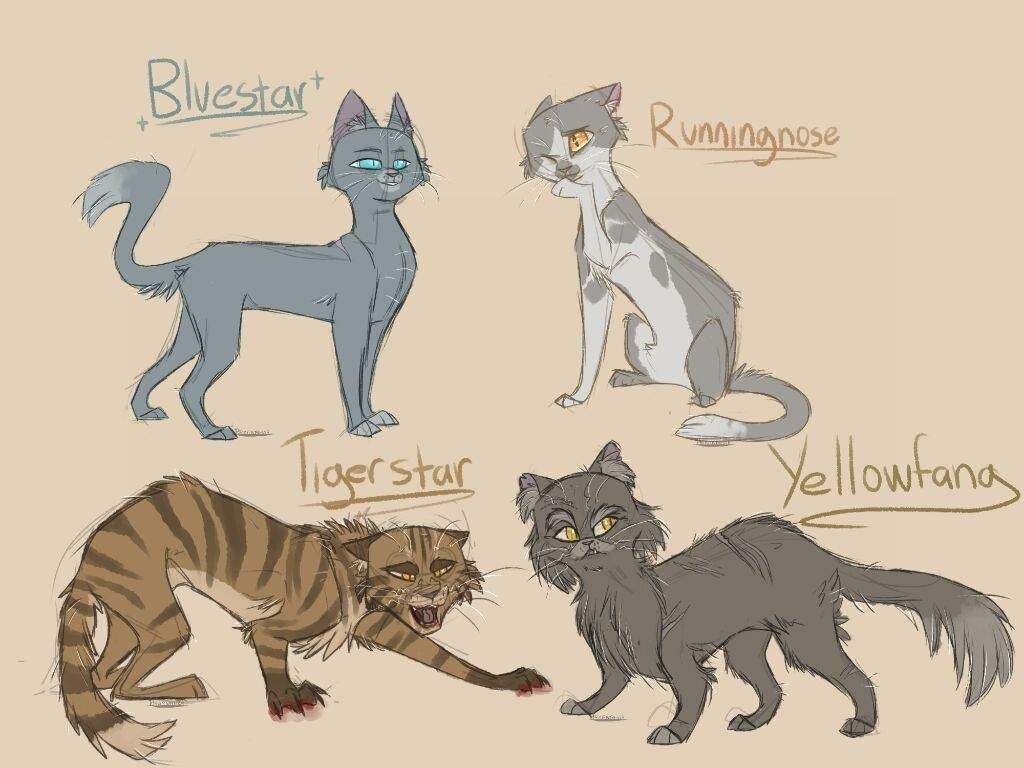 Warriors Sketch Batch With Images Warrior Cats Books Warrior