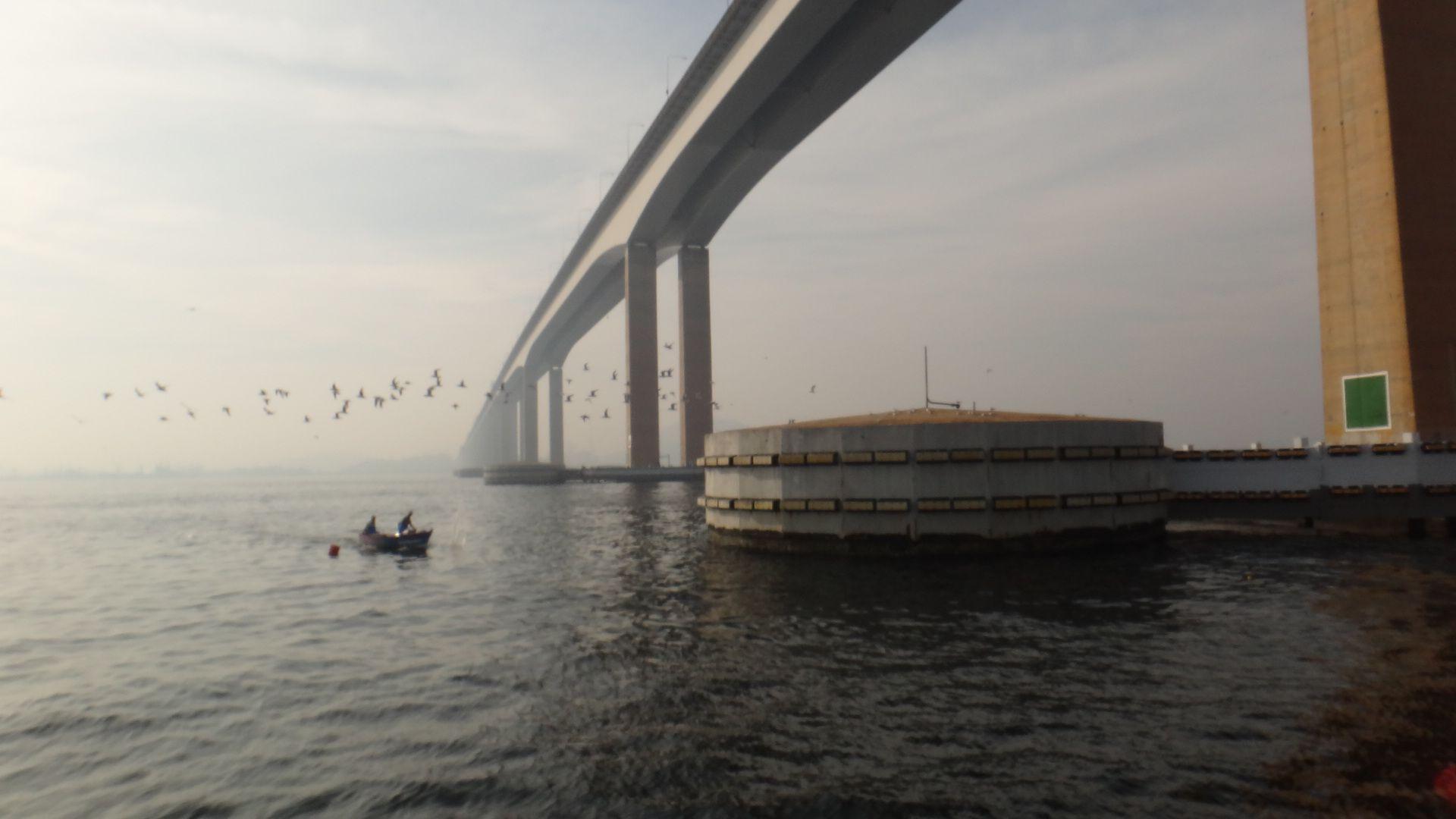 Pilares da Ponte Rio-Niterói. Maio 2014. Foto de Carolina Belo. #baiadeguanabara #riodejaneiro #errejota #labhidro #ufrj #ponte #ponterioniteroi