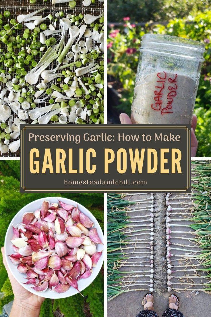 How to Make Homemade Dried Garlic Powder Recipe
