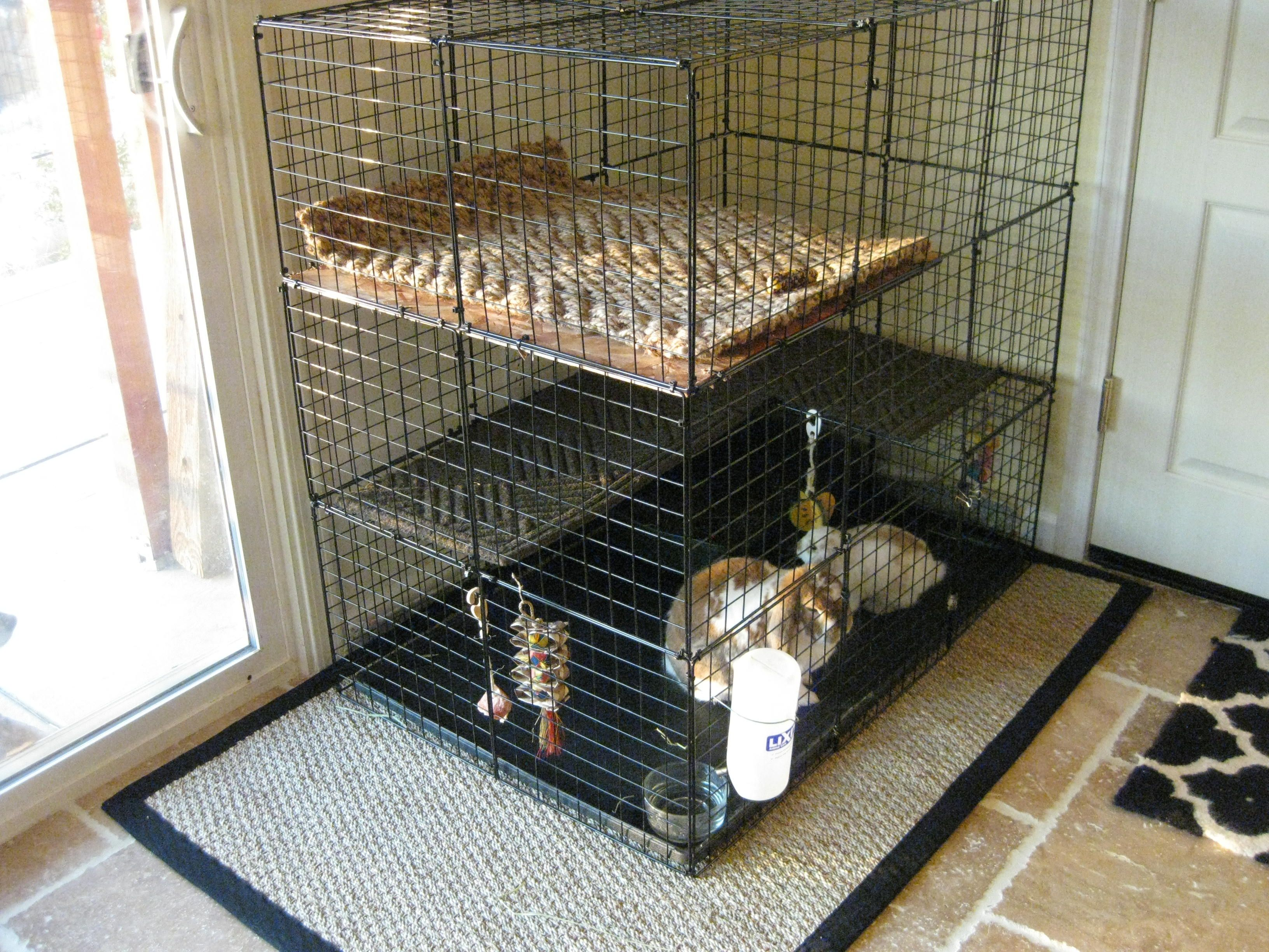 tasteful c c cage i used a dog crate replacement tray to. Black Bedroom Furniture Sets. Home Design Ideas