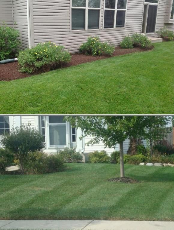 Fox River Lawn Care, LLC is a local company that offers lawn care ...