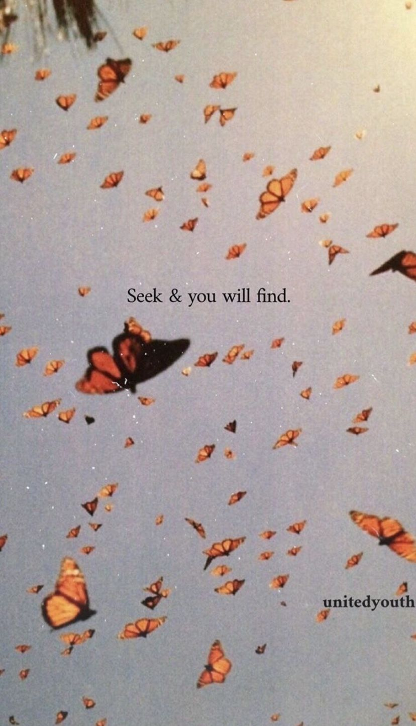 Seek And You Will Find In 2020 Butterfly Wallpaper Butterfly Wallpaper Iphone Iphone Wallpaper Vintage