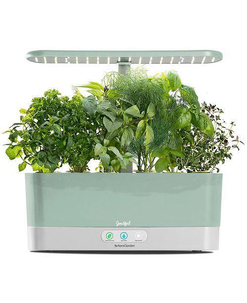 Goodful By Aerogarden Harvest Slim Countertop Garden 640 x 480