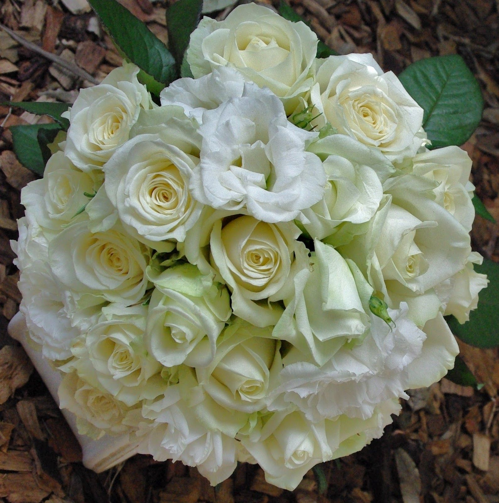 Crazyflorist A Bunch Of 25 White Roses For A Unique Gesture For 5