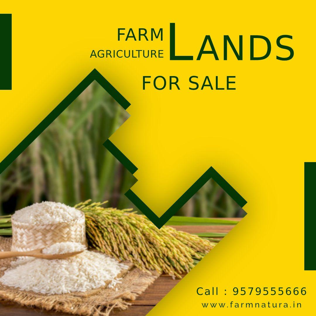 farmnatura.in Farmland for sale, Natural farming, Farmland