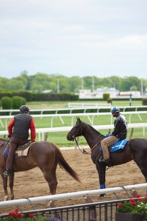 Cozmic One at Belmont. 5/2015 Photo by Kyle Acebo