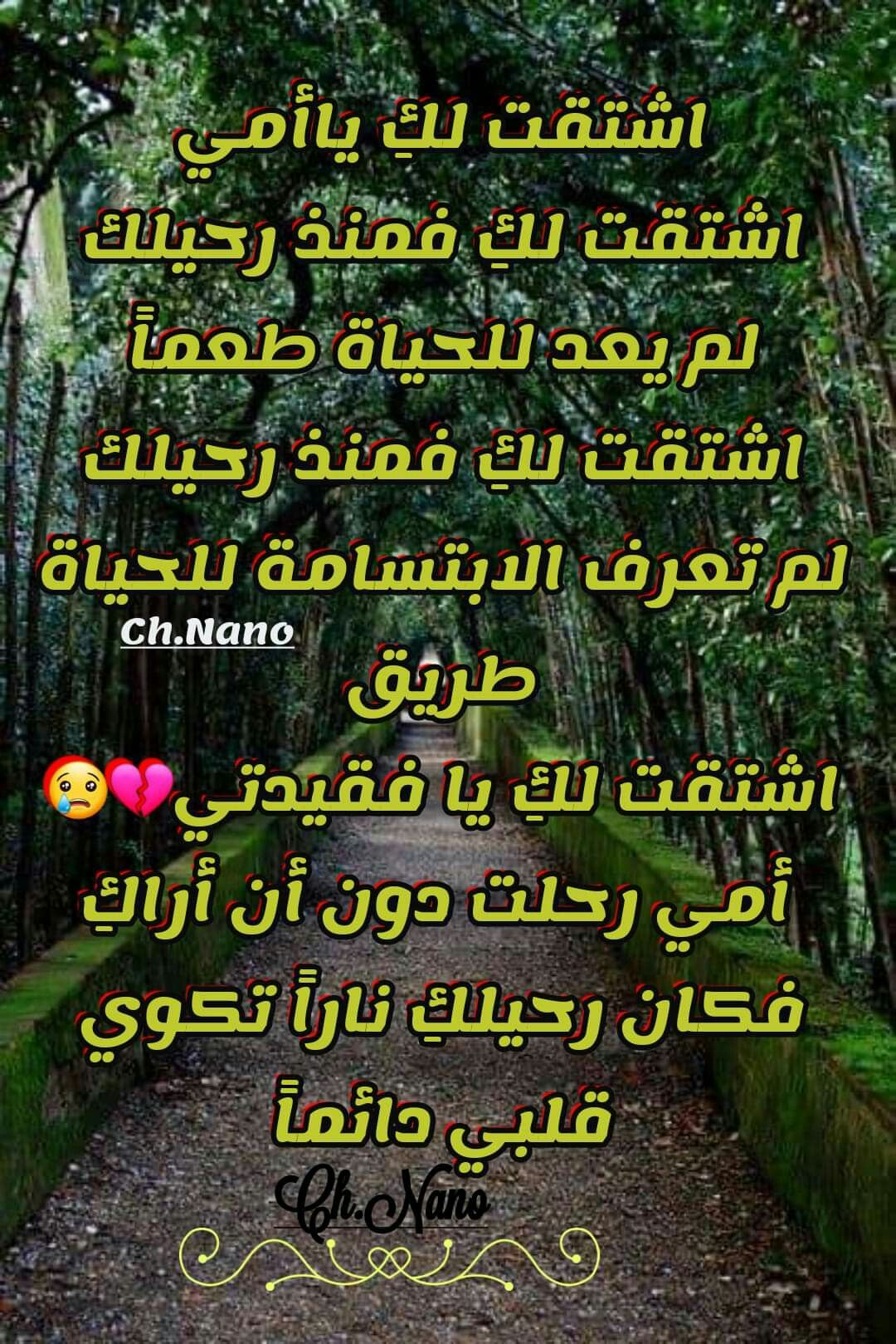Pin By Dode Eltohamy On أمي حبيبتي Words Quotes Arabic Words Words
