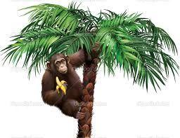 Resultado de imagen de mono comiendo banana  Preescolar