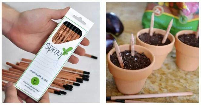 Plant a pencil