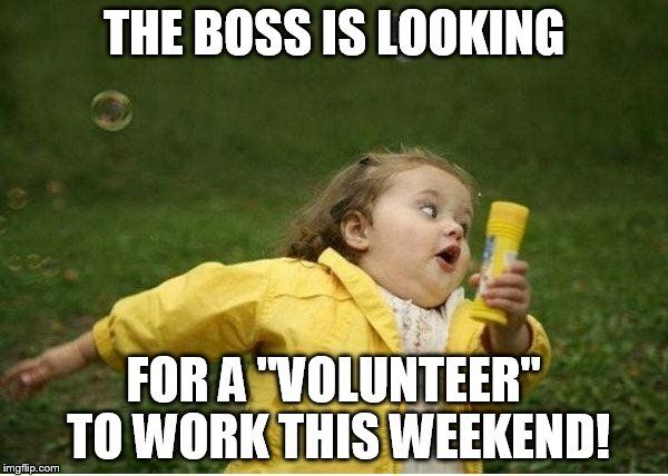 84a6487cad26dc7a67b5fd2f9c65e9fa chubby bubbles girl meme the boss is looking for a \