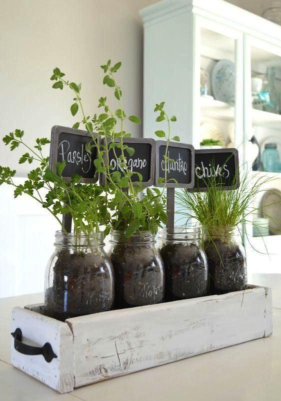mini huertos de plantas aromticas en casa la opcin inteligente cuando no sobra el espacio