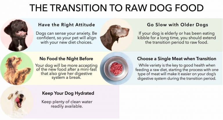 All About Raw Dog Food Raw Dog Food Recipes Types Of Dog Food