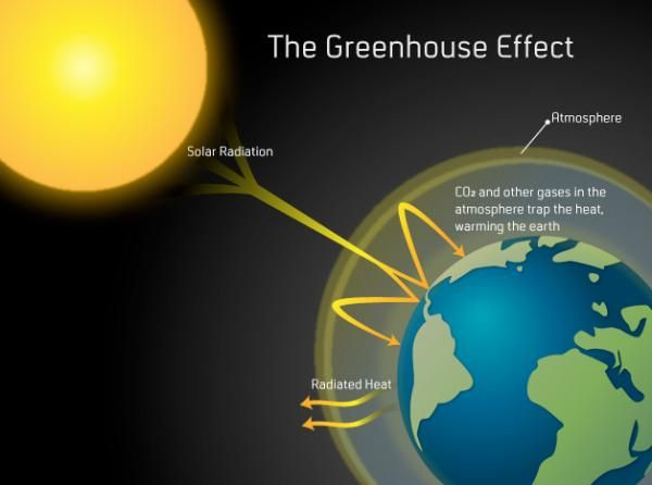 Basic general the greenhouse effect the carbon cycle pinterest basic general the greenhouse effect ccuart Images