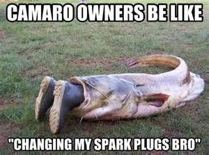 Camaro Vs Mustang Meme Bing Images Inspiration Fishing Humor