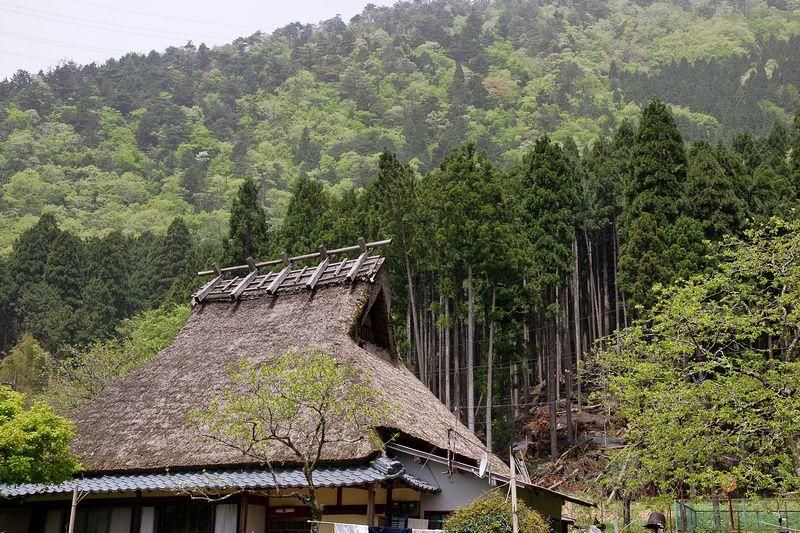 晝夜邊際: 村內巡禮 - yam天空部落