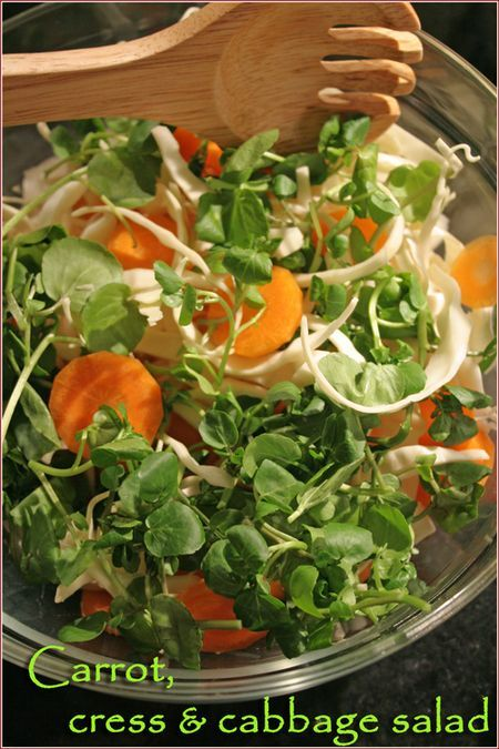 Crunchy carrot, cress & cabbage salad. Time to detox!