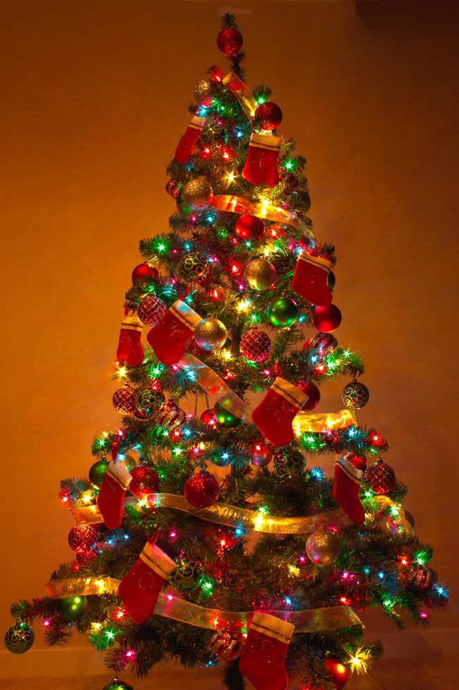 40 christmas tree lights decorations ideas - Christmas Trees With Lights
