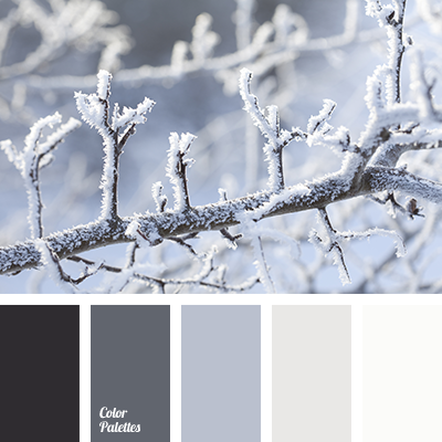 Almost Black Beige Color Graphite Gray Light Shades Of Winter Snow