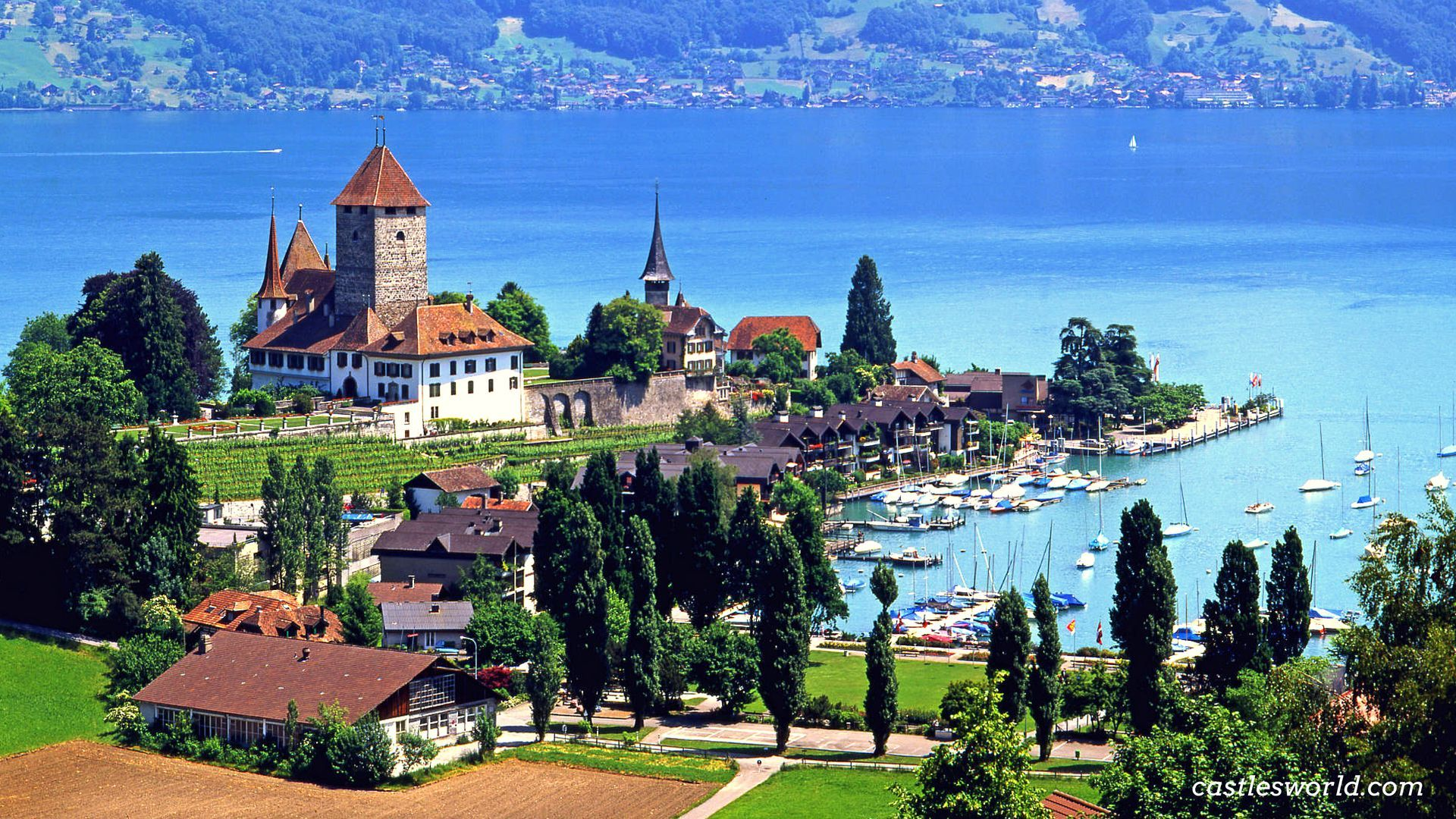 Spiez Castle Switzerland Surrounded By Magnificent Vineyards