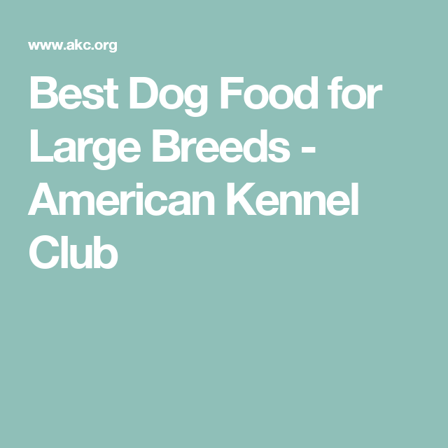 Best Dog Food For Large Dogs & Puppies