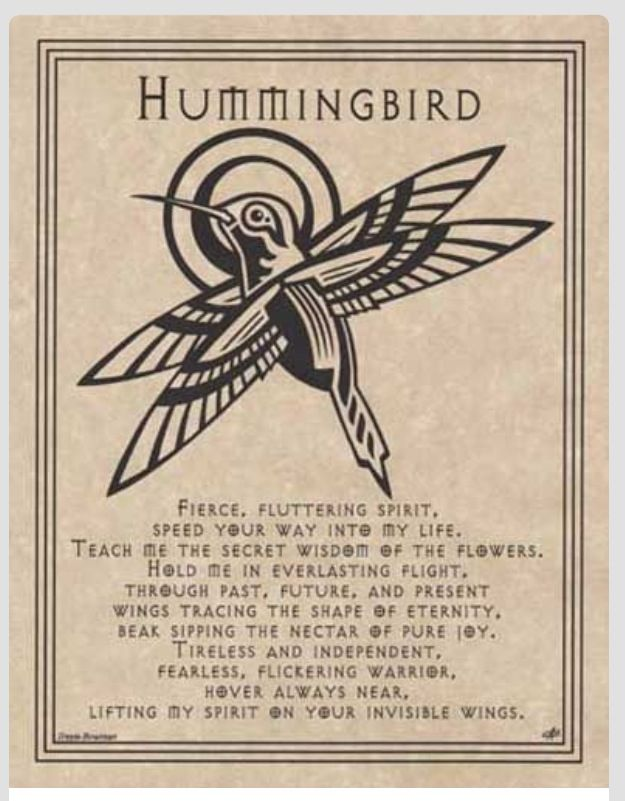 Hummingbird Wisdom Animal Medicine Pinterest Hummingbird