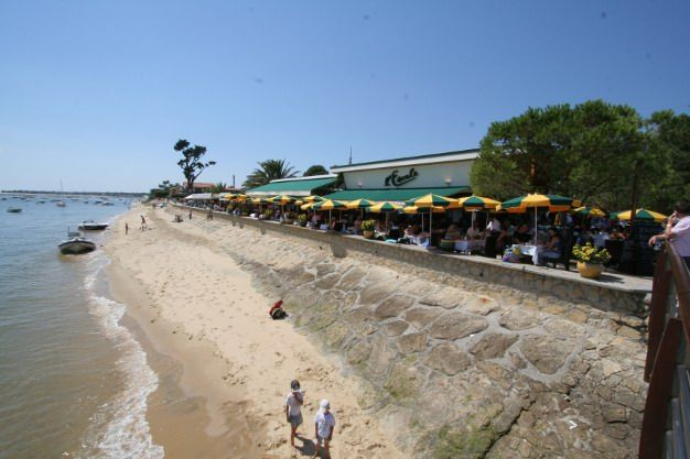 Http Www Lescale Restaurant Com Bassin D Arcachon Arcachon Lacanau