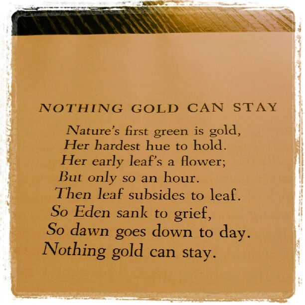outsiders nothing gold can stay essay The outsiders essay johnnys dying words stay gold, ponyboy stay gold (pg 181) it means that nothing pure and innocent can stay as it is  nothing gold can stay the poem words: 2543 — pages: 11 outsiders that fighting is useless and ponyboy should stay gold when he dies, dally is upset and runs from the room chapter 10 ponyboy.