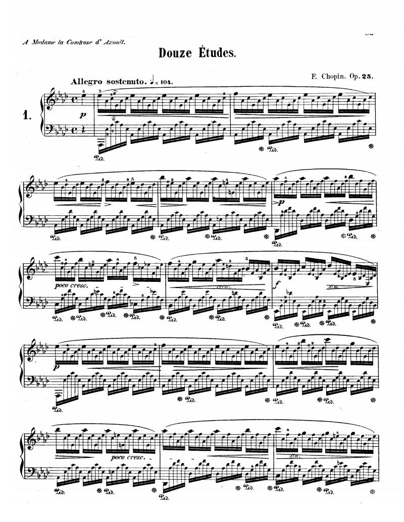 Etudes, Op. 25