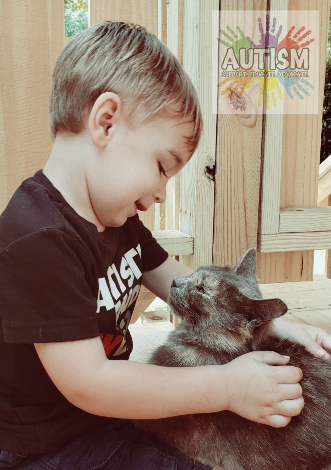 The Fox and the Cat Cats, Living with autism, Autism support