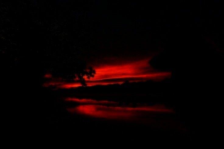 sunsets and sunrises -Deutscher Schäferhund Sunrise von Kristin Castenschiold auf 500px   - sunset