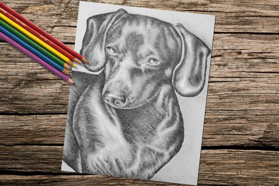 Dachshund Dog Coloring Book Page Adult By ArtistrybyLisaMarie