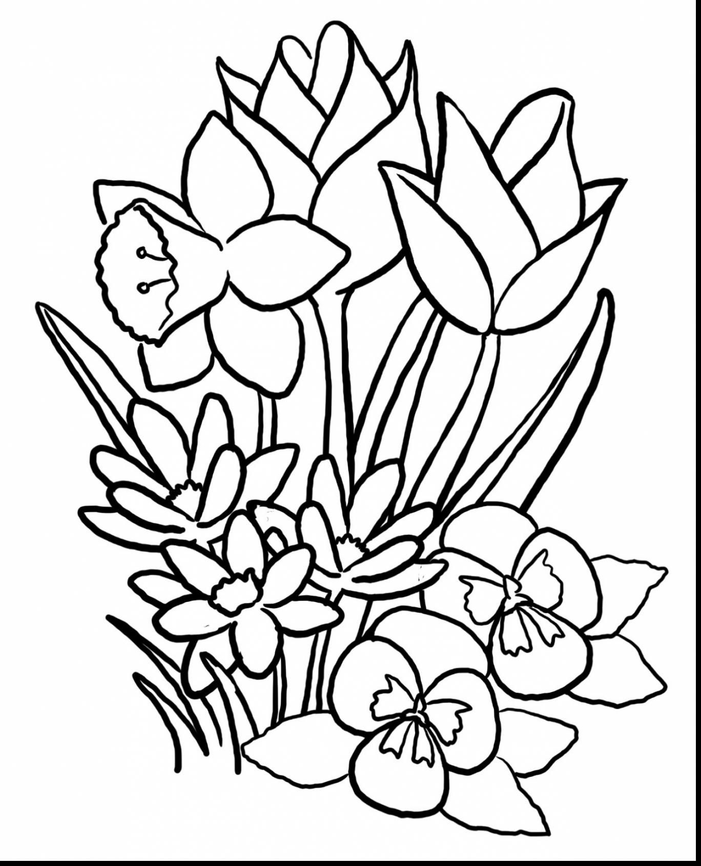 great spring flower coloring pages with spring coloring pages - Spring Flowers Coloring Pages