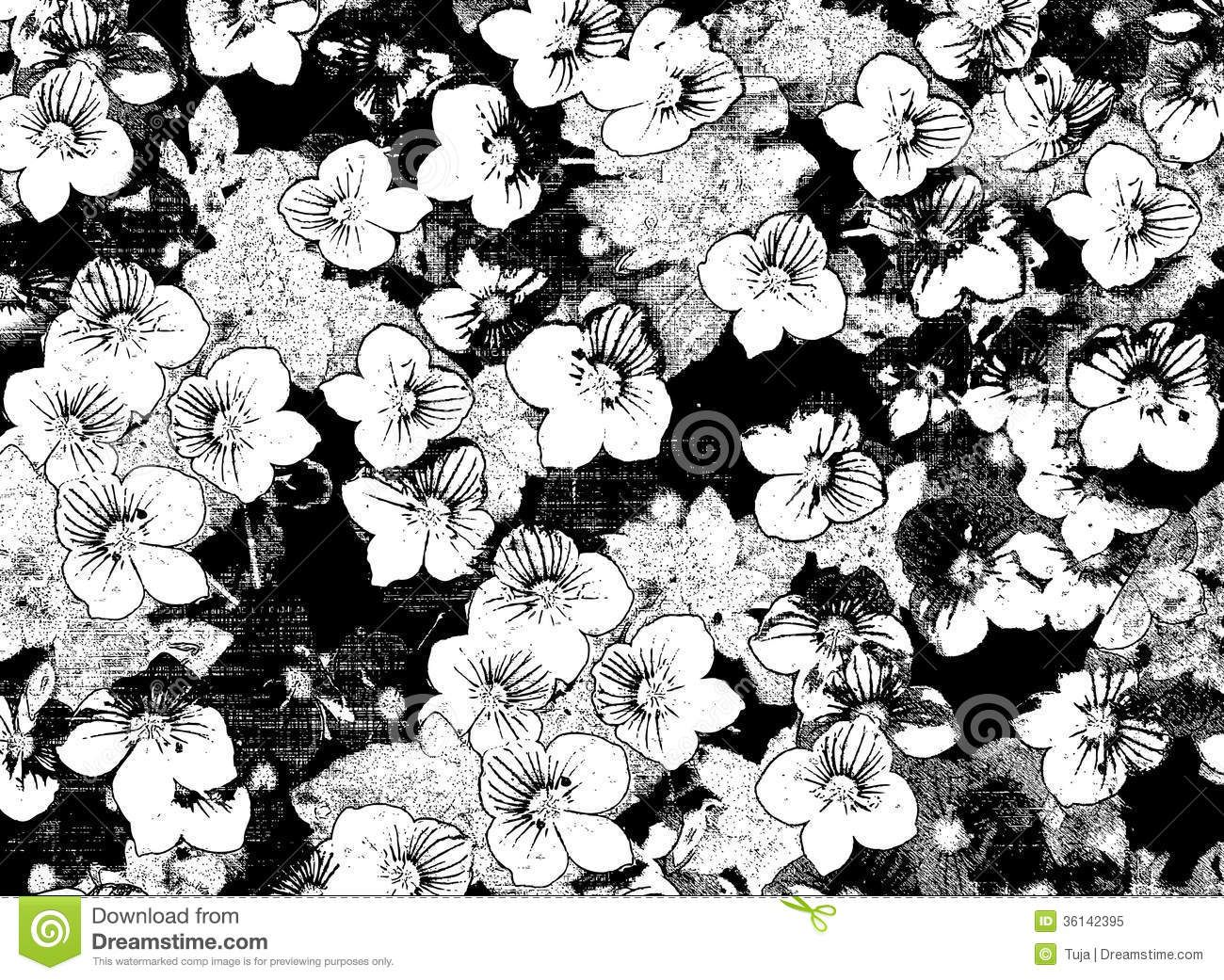 Black And White Flower Backgrounds 6 High Resolution Wallpaper Jpg