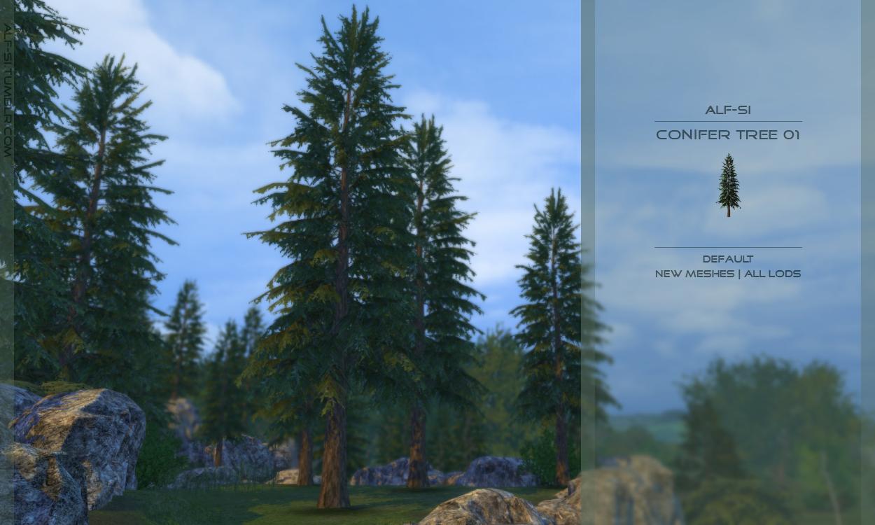 Dani Finds Conifer Trees Conifers Sims 4