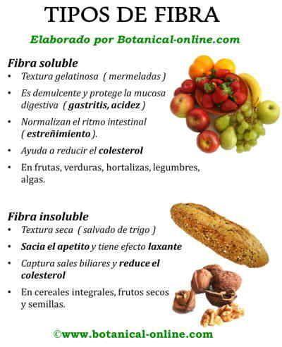 Tipos de fibra y beneficios fibra soluble e insoluble dieta pinterest fibra tipos de y - Alimentos que tienen fibra ...