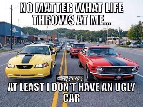 Pin By Angela Gilman On Mustang Humor Mustang Cars Mustang