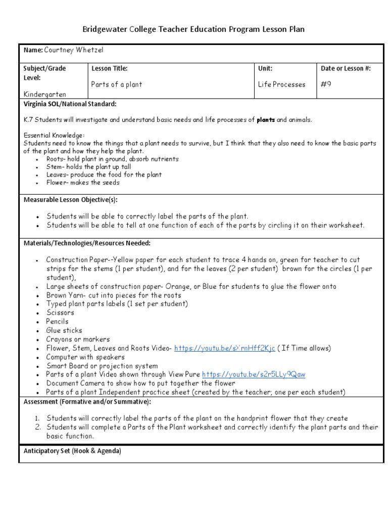 Label A Plant Worksheet Bridgewater College Teacher Education Program Lesson Plan In 2020 Kids Worksheets Printables Plants Worksheets Teacher Education Program