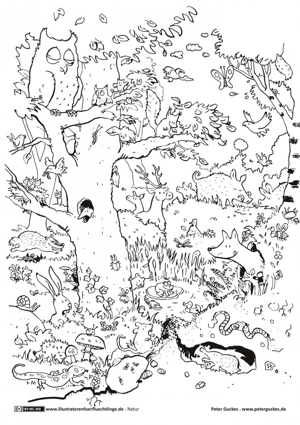 Download als PDF: Natur  Wald Tiere  Guckes ...
