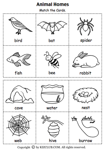 Here\'s a set of cards for matching animals to their homes. | Animals ...