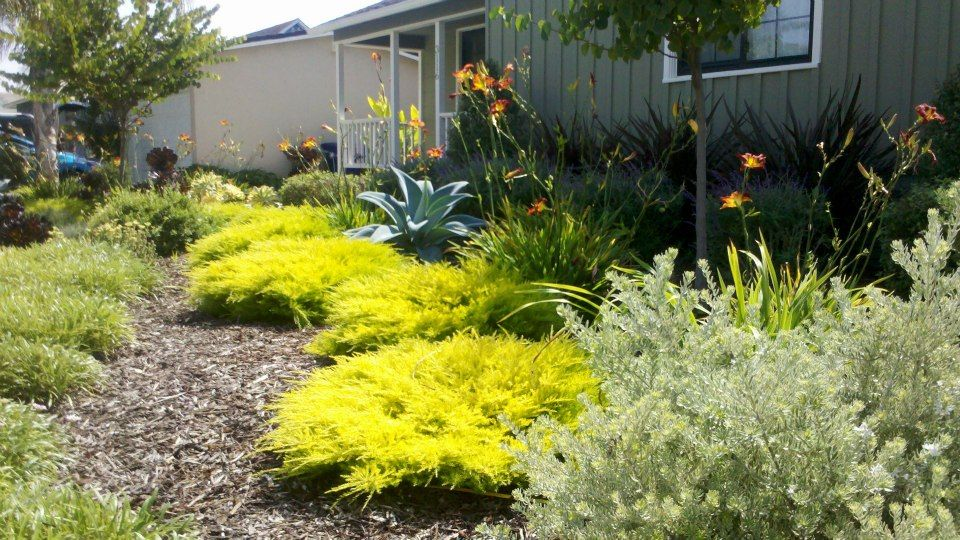 Scarlett S Landscape Inc Has Delivered Exceptional Landscaping Services In Ventura And Oxnard For Best Or Design