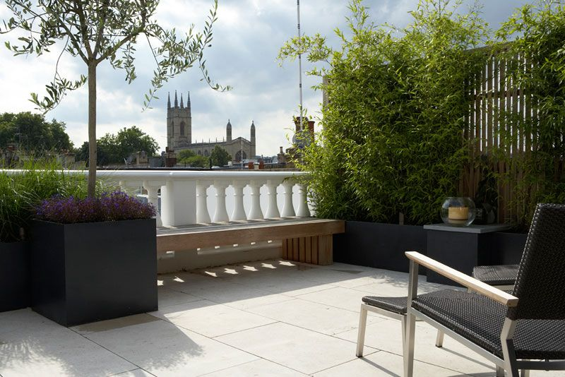 Well screened roof terrace by charlotte rowe roof for Terrace trees